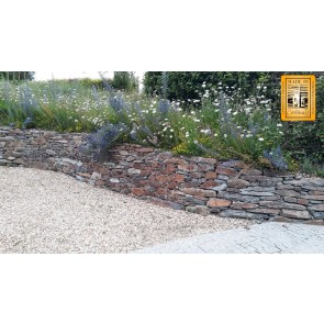 Garden hedging stone to create a drystone flowerbed