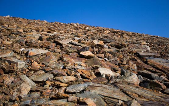 Devonian slate